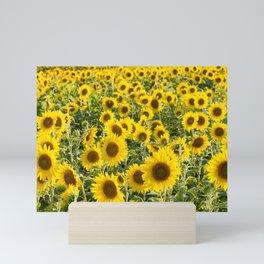 Sunflower Field Mini Art Print