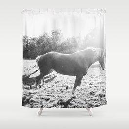 Freedom Shower Curtain