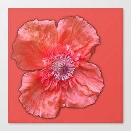 Poppy monochromatic Canvas Print