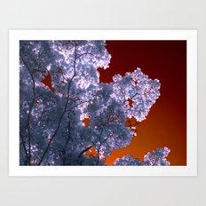 night colors III Art Print