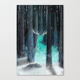 frost, flares Canvas Print