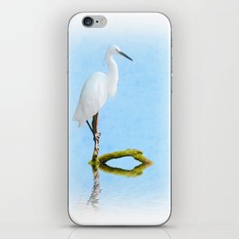 Perched iPhone Skin