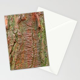 Mossy Wood Rifts Stationery Cards