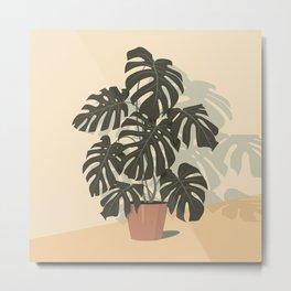Tropical Plant. Monstera  Metal Print