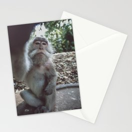 Anybody in there? Stationery Cards