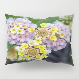 Tropical Plant Lantana Camara or West Indian Lantana Pillow Sham