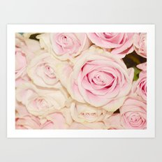 Pretty Pink White Roses Art Print