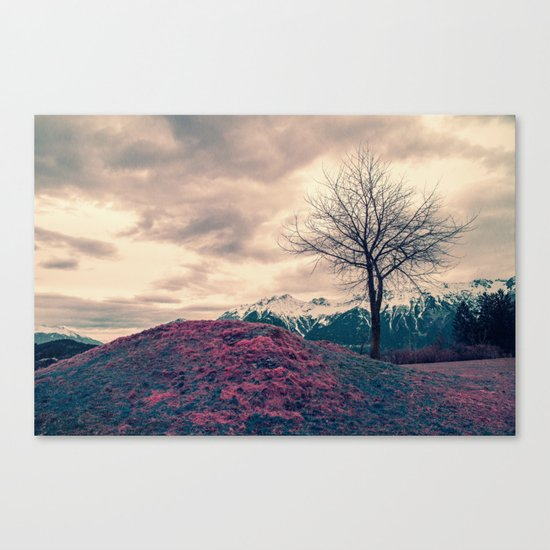 Japanese Mountains Canvas Print