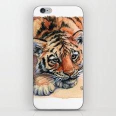 Resting Tiger Cub 896 iPhone & iPod Skin
