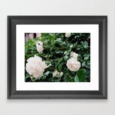 film + flowers + brooklyn Framed Art Print