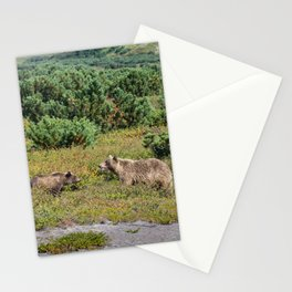 Kamchatka brown bears (mother and cub) Stationery Cards
