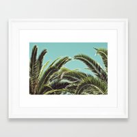palms Framed Art Prints featuring Palms by Lawson Images