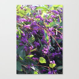 Christy's Garden 4 Canvas Print