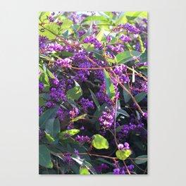 Christy's Garden 4 Canvas Print
