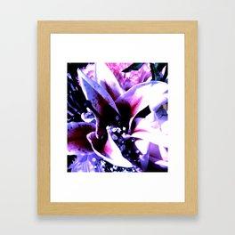 STAyMEN Framed Art Print