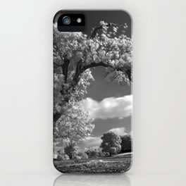 A Tree Blows in the Wind iPhone Case