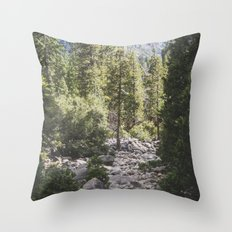 Yosemite Park, California Throw Pillow