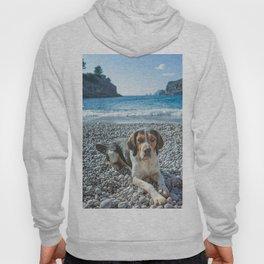 dog on the beach Hoody