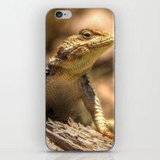 Ready For His Close Up iPhone & iPod Skin