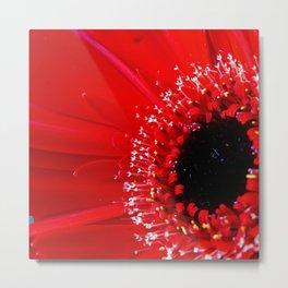 Dark Red Germini Metal Print