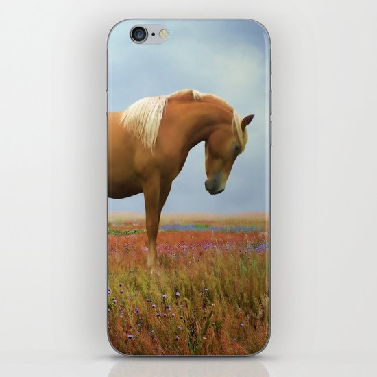 Painted Pastures iPhone & iPod Skin