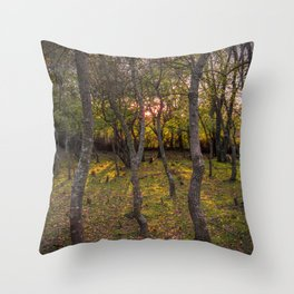 Forest, sunset, art photography at the bulgarian village Lisicite Throw Pillow