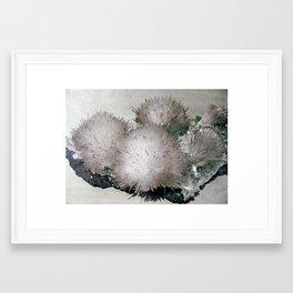 Furry Crystal  Framed Art Print