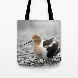 American Avocet mother protecting babies Tote Bag