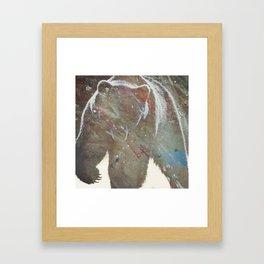 Kodiak Framed Art Print