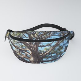 Pining Over U Fanny Pack