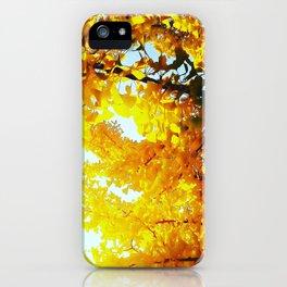 Ginkgo Tree iPhone Case