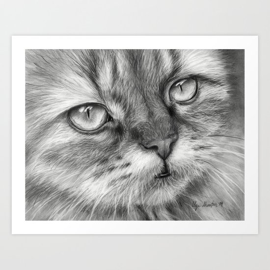 Cat Drawing Art Print