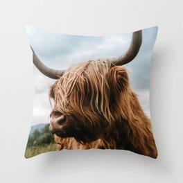 Scottish Highland Cattle - Animal Photography Throw Pillow