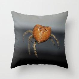 Spinning silk Throw Pillow