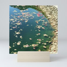 Edge of Pond With Scattered Flower Petals Mini Art Print