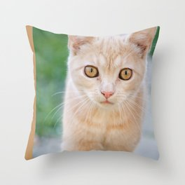 Esmeralda The Kitty Throw Pillow