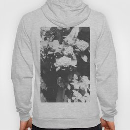 Mission Hill in black Hoody
