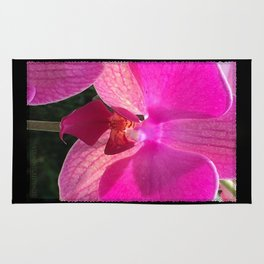 Fuschia Orchid Flower Blossom from Jalisco Mexico Rug