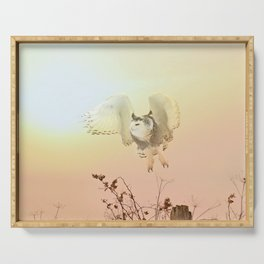 Snow owl sunset Serving Tray