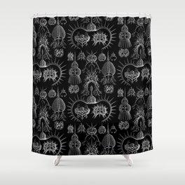 Ernst Haeckel - Spyroidea Shower Curtain