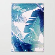 Banana Leaf Blue Canvas Print