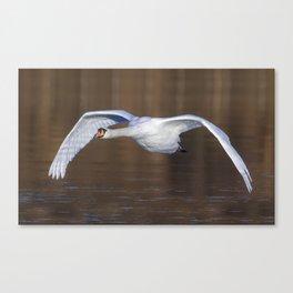 The Mute Flight Canvas Print
