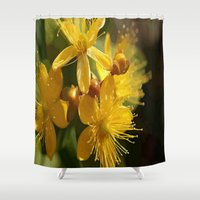 marc johns Shower Curtains featuring Turkish St Johns Wort Wild Flower Vector Image by taiche