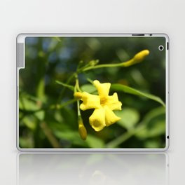 Carolina Jasmine Single Bloom In Sunlight Laptop & iPad Skin