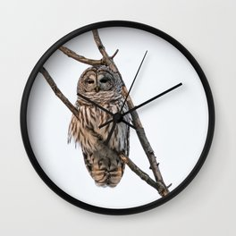 Barred Owl visitor on New Years Eve Wall Clock