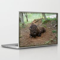buffalo Laptop & iPad Skins featuring Buffalo by FortuneArt&Photography