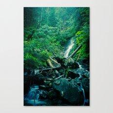Paradise Canvas Print