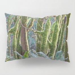 YOUNG RAINFOREST MAPLES Pillow Sham