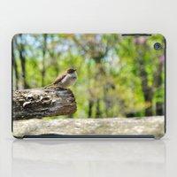 sparrow iPad Cases featuring Sparrow by KimberosePhotography