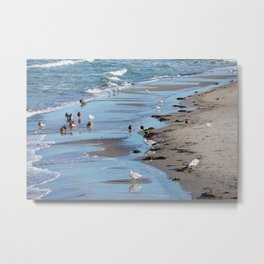 Birds by the sea Metal Print